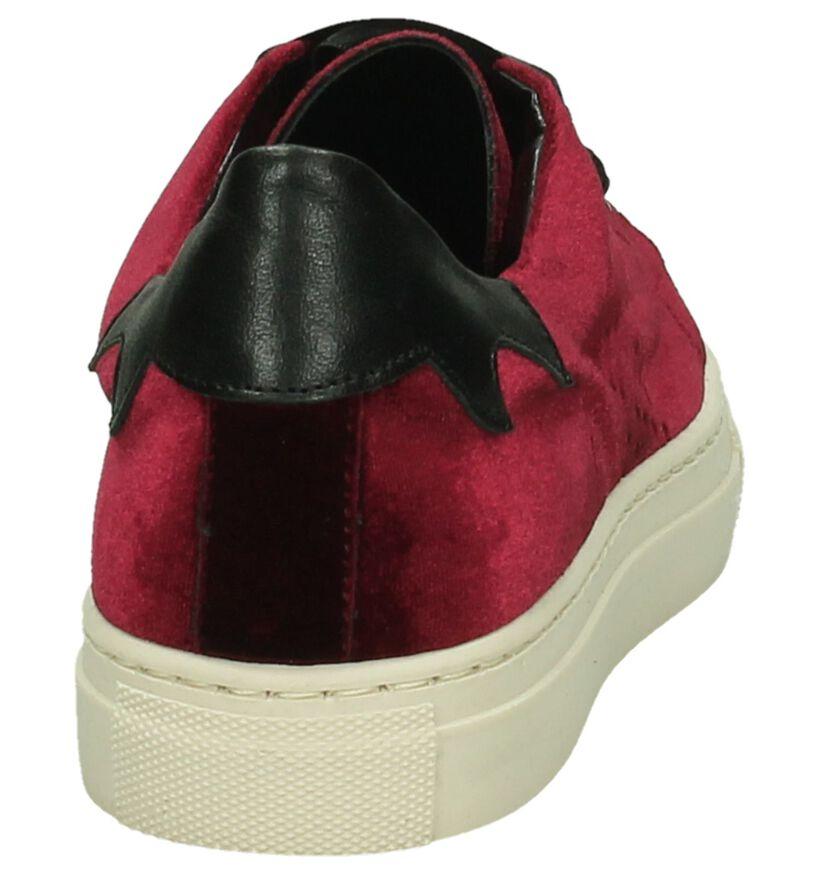 Bordeaux Fluwelen Sneaker Gio+ in fluweel (195970)