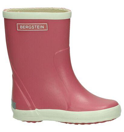 Regenlaars Geel Bergstein , Roze, pdp