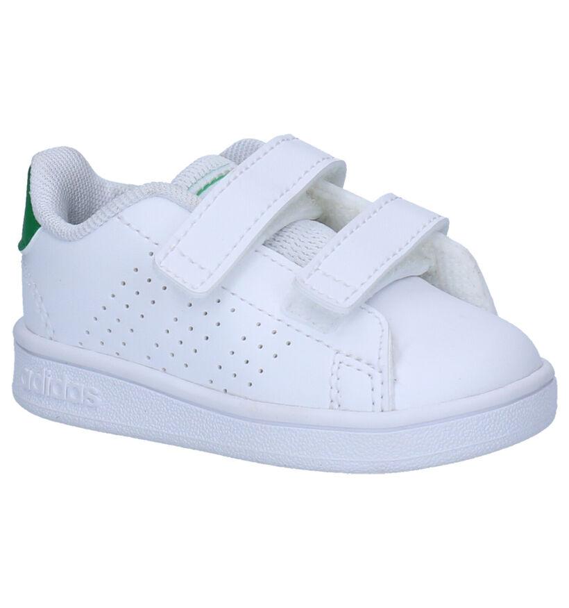 adidas Advantage Witte Sneakers in kunstleer (252539)