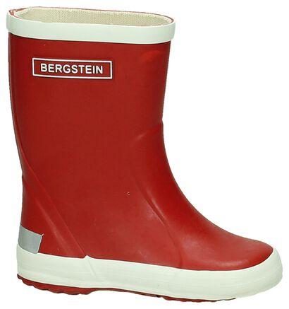 Regenlaars Geel Bergstein in rubber (180420)