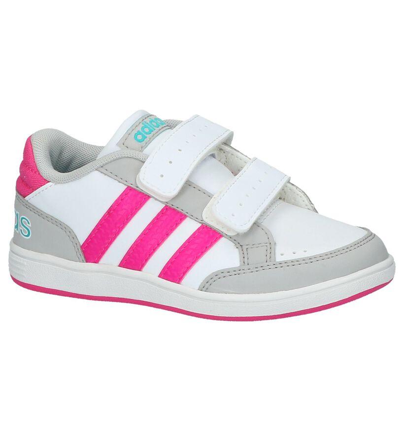 Witte Sneaker adidas Hoops in kunstleer (199446)
