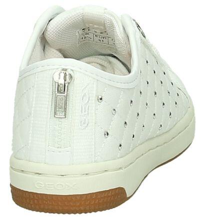 Grijze Geox Slip-on Sneaker in stof (170552)