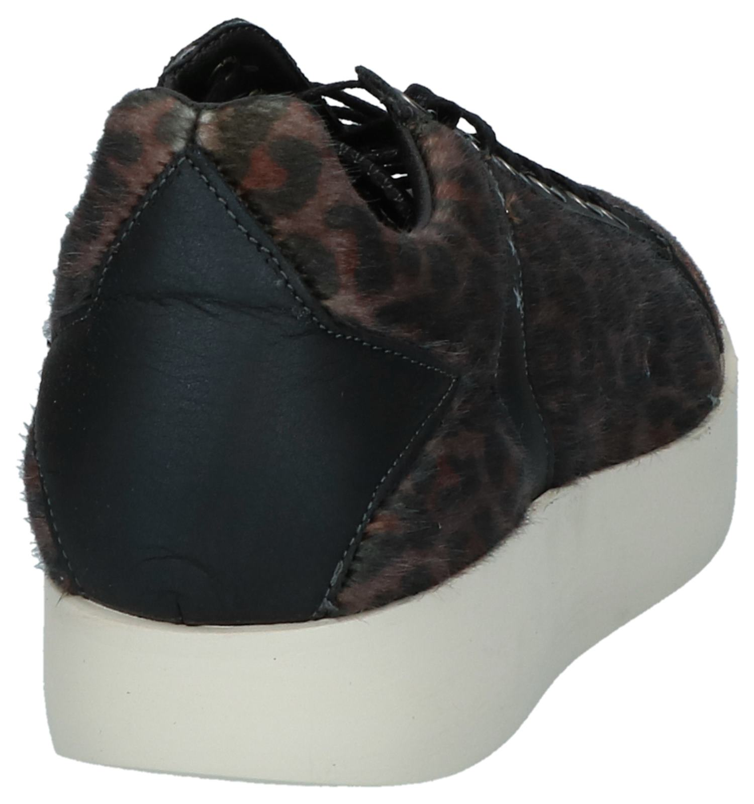 Sneakers Leopard Lecce Low D'oro Pantofola Donne Bruine EDIWH92
